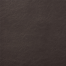 Aston-esspresso-814-vinyl-fabric